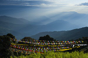 Mountains to the east seen at sunrise from Tiger hill viewpoint, with prayer flags in the foreground, Darjeeling, West Bengel, India October 2007  -  Bernard Castelein