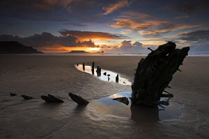 Rhossili Bay, with wreck of the Helvetia buried in the sand and Worm's Head on the horizon, Gower, Wales  -  Adam Burton