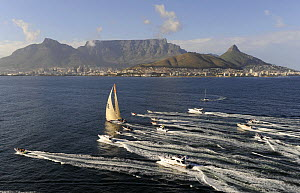 ^Ericsson 4^ arriving in Cape Town to win the first leg of the Volvo Ocean Race into Cape Town, November 2008. The 10th Volvo Ocean Race, 2008-09. For EDITORIAL USE only  -  Rick Tomlinson