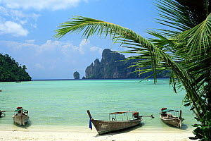Boats pulled up onto the beach of The Phi Phi islands, Krabi Province, southern Thailand.  -  Francis Abbott