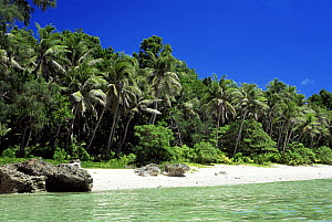 The beach at Ngemelis island, on the outer fringing reefs of Palau's Rock Islands area, The Republic of Palau, Micronesia, western Pacific Ocean.  -  Francis Abbott