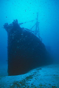 Wreck of ship 'The Santa', scuttled in July 1988 and now an artificial reef off Menorca, Mediterranean sea.  -  Francis Abbott