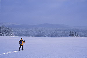 Cross-country skiing across Second Connecticut Lake, Pittsburg, New Hampshire, USA  -  Jerry Monkman
