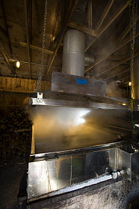 A sap evaporator in a sugar house in Barrington, New Hampshire, USA. The Sugar Shack, manufacture of maple syrup.  -  Jerry Monkman