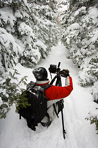 A photographer in fresh snow on the Mount Willard Trail, Crawford Notch State Park, White Mountains, New Hampshire, USA - Jerry Monkman