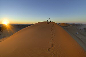 People filming on the top of sand dunes close to the Gobabeb Training and Research Centre, Namib Desert, Namibia 2007  -  Solvin Zankl