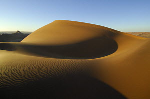 Sand dunes close to the Gobabeb Training and Research Centre, Namib Desert, Namibia 2007  -  Solvin Zankl