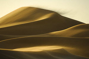 Close to the city of Swakopmund a sand dune is on the move. The landscape of the Namib Dunes is formed by the powerful force of desert winds. These winds gradually push the dunes in a north-westerly d... - Solvin Zankl