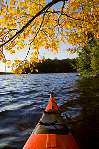 View from Canoe on the Saco River, Hollis, Maine, USA.  -  Jerry Monkman