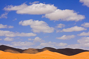 Orange sand dunes, black mountains and blue sky in the Sahara desert, Erg Ouzina, Southern Morocco, NW Africa  -  Bruno D'Amicis