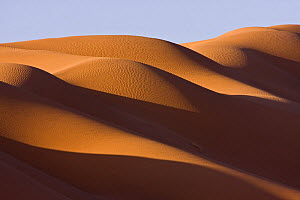 Sand dunes in the Sahara desert at sunrise at the border of Morocco and Algeria, NW Africa - Bruno D'Amicis