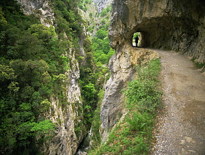Hiker on path that is cut through the rock, Garganta del Cares, Picos de Europa NP, Leon, Spain, July 2000 - Inaki Relanzon
