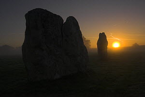 Neolithic standing stones at Avebury, Wiltshire, UK, at sunrise on a misty morning. Largest stone circle in the world, 427m in diameter, covers an area of 28 acres. - Peter Lewis