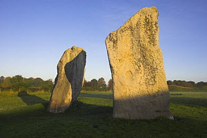 Neolithic standing stones at Avebury, Wiltshire, UK. Largest stone circle in the world, 427m in diameter, covers an area of 28 acres. - Peter Lewis