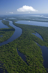 "Aerial view of Anavilhanas Ecological Station and ""igap�"" flooded Amazon Rainforest, in Negro River, north of Manaus city, Amazonas State, Northern Brazil.  -  Luiz Claudio Marigo"