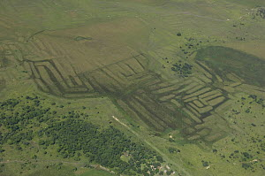 Aerial view of vestiges on the land of ancient agricultural works of primitive people, Beni floodplain, Beni Department, Bolivia.  -  Luiz Claudio Marigo