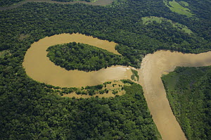 "Aerial view of river meander and formation of ox-bow lake, in Amazon ""v�rzea"" Rainforest during the great 2008 flood, Northern Santa Cruz Department near the border with Beni Department, Eastern Boliv...  -  Luiz Claudio Marigo"