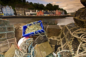 Fishing nets and lobster pots on the pier. Tobermory harbour, Isle of Mull, Scotland, UK.  -  Nick Garbutt