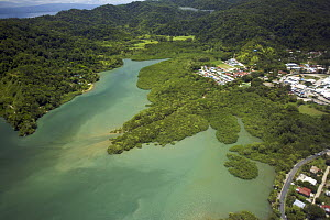 Aerial view of Golfito Bay with mangrove forest, Puntarenas, Costa Rica.  -  Tim Laman