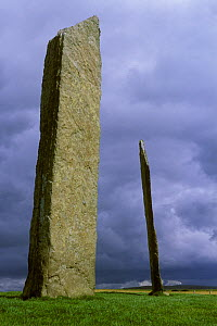 Stenness standing stones, The Orkney Isles, Scotland, UK - Jouan & Rius