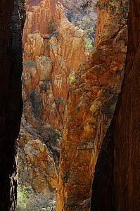 Stanley Chasm, a narrow cleft of 80m height, MacDonnell Ranges Northern Territory, Australia - Jouan & Rius