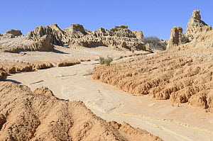 Eroded mud and sand of Walls of China, Mungo National Park, New South Wales, Australia  -  Jouan & Rius