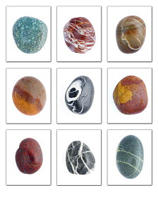 Collection of smooth pebbles from Auchmithie beach, Angus, Scotland, UK - Niall Benvie