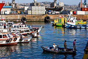Busy port, Valparaiso, Chile 2008.  -  Onne van der Wal