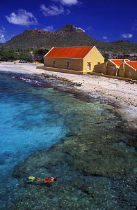 Aerial view of woman (model released) snorkeling. Boca Slagbaai, Bonaire, Caribbean Sea.~ NOT FOR SALE IN THE USA  -  Brandon Cole