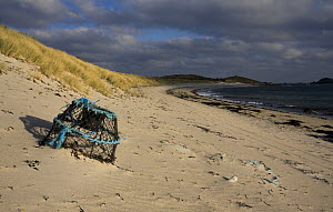 Lobster pot on Par Beach, St. Martin's, Isles of Scilly. December 2008.  -  Merryn Thomas