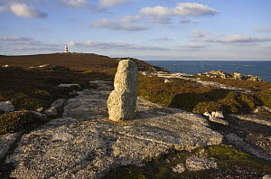 Neolothic / early Bronze Age idol on Chapel Down, with Daymark in the distance. St. Martin's, Isles of Scilly. December 2008.  -  Merryn Thomas