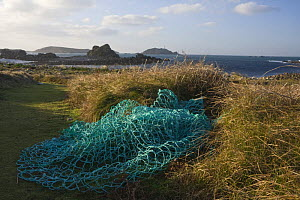 Fishing nets beside the footpath at Pernagie, St. Martin's, looking towards the Round Island Lighthouse. December 2008.  -  Merryn Thomas