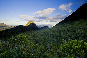 Landscape in Marojejy National Park, North east Madagascar. - Inaki Relanzon