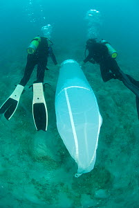 Jo Browne and Kade Mills use a cylinder cone plankton net to sample gelatinous zooplankton for Coral Reef census, Lizard Island, Queensland, Australia, April 2008  -  Jurgen Freund