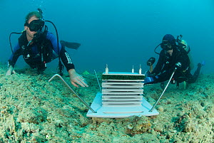 Julian Caley and Shawn Smith install an artificial reef as part of CReefs four year project to check what life form will inhabit this structure, Coral Life census, Lizard Island, Queensland, Australia...  -  Jurgen Freund