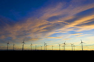 Wind farm with numerous wind turbines at dawn, nr Donna Nook, Lincolnshire, UK, November 2008 - Laurent Geslin