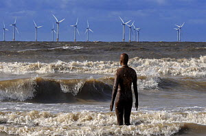 One of Anthony Gormley's Another Place sculpture in the sea with offshore windfarm in distance, Crosby, Liverpool, October 2008  -  Graham Eaton