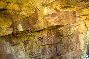 Aboriginal cave paintings at Death Adder art site, one of the Quinkan rock art sites, Jowalbinna, Cape York, Queensland, Australia  Restrictions: Editorial use only  -  Steven David Miller