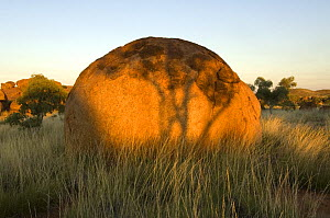 The Devils Marbles, a series of sandstone rocks perched at seemingly impossible angles, sacred to the regional Aboriginal people.  Devils Marbles Conservation Park, Northern Territory, Australia, July... - Steven David Miller