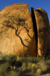 The Devils Marbles, a series of sandstone rocks perched at seemingly impossible angles, sacred to the regional Aboriginal people. Split by weather,  Devils Marbles Conservation Park, Northern Territor... - Steven David Miller