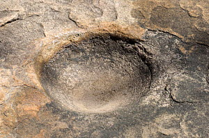Grinding hole used in the creation of Aboriginal Xray-style art at the Ubirr Rock Art Shelter, Kakadu National Park, Northern Territory, Australia Restrictions: Editorial use only  -  Steven David Miller