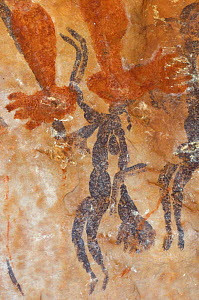 Ancient Wandjina figures painted over a much older panel of Bradshaw rock art, Northern Kimberley region and the Mitchell Plateau, Western Australia .  -  Steven David Miller