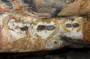 A rock art shelter in the northern Kimberley region features a cluster of Wandjina figures peering out from the sandstone rock surface, Northern Kimberley region and the Mitchell Plateau, Western Aust...  -  Steven David Miller