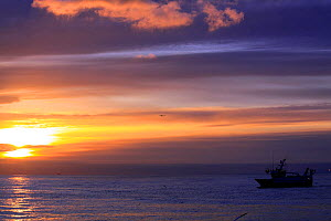 MFV at sunrise. North Sea, 2009. Property released. - Philip Stephen
