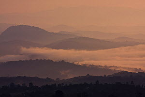 Cloud forest and the landscape surrounding Bonga town at dawn, Kaffa Zone, Southern Ethiopia, East Africa December 2008 - Bruno D'Amicis