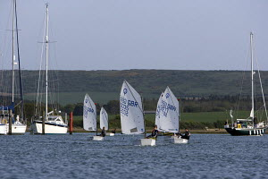 Fleet of Optimists sailing on the river Yar, Yarmouth, Isle of Wight. May 2009. - Richard Langdon