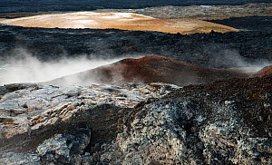 Acidic steam and solidified lava surface at Leirhnj�kur, Iceland, June 2008  -  Wild Wonders of Europe / O Haarberg