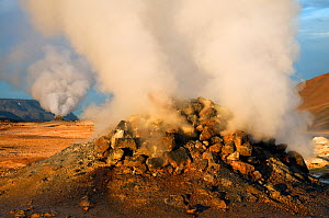 Volcanic activity, Steam vent at Hverir, N�mafjall, Iceland, July 2008  -  Wild Wonders of Europe / O Haarberg