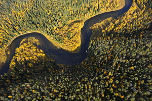 Aerial view of Kitkajoki River, Oulanka National Park, Finland, September 2008  -  Wild Wonders of Europe / Widstra