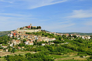 Medieval hill town of Motovun (Montona d'Istria) Croatia with Venetian colonial architecture.  -  Nick Upton